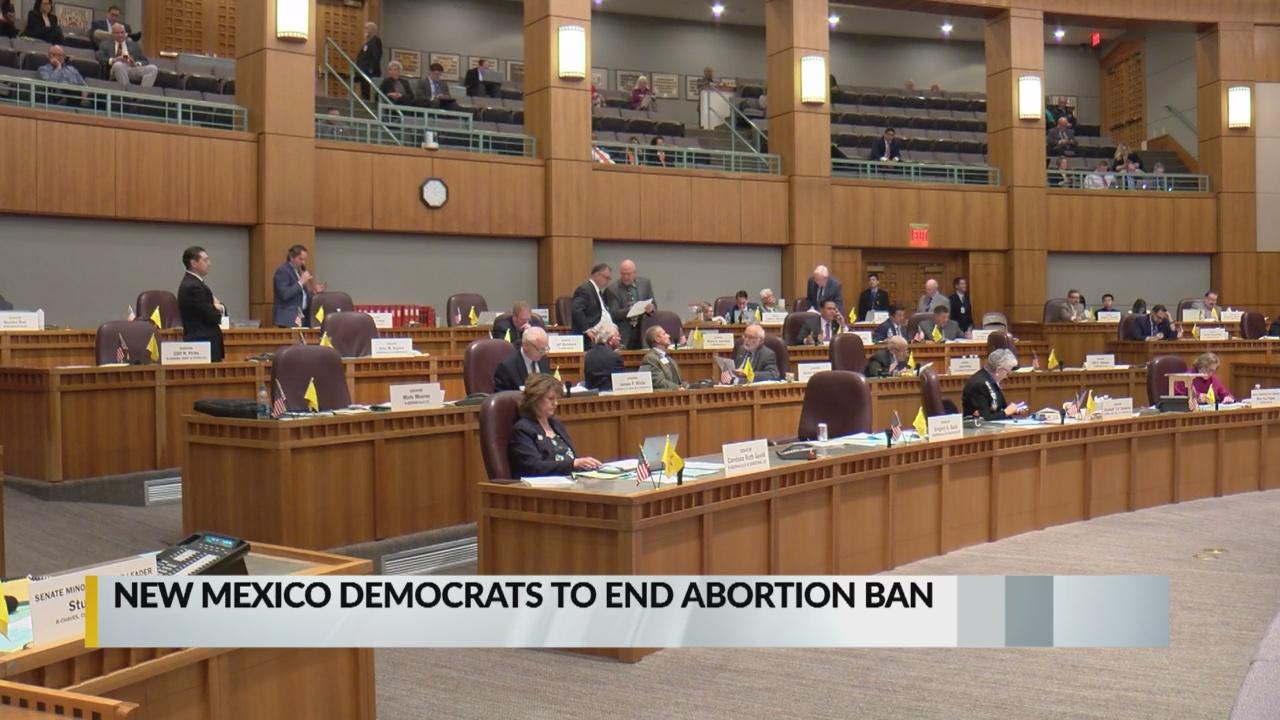 Abortion ban_1542654390621.jpg.jpg