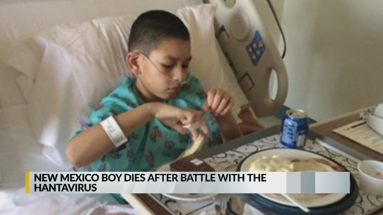 New Mexico boy dies after hantavirus battle_1541131691116.jpg.jpg