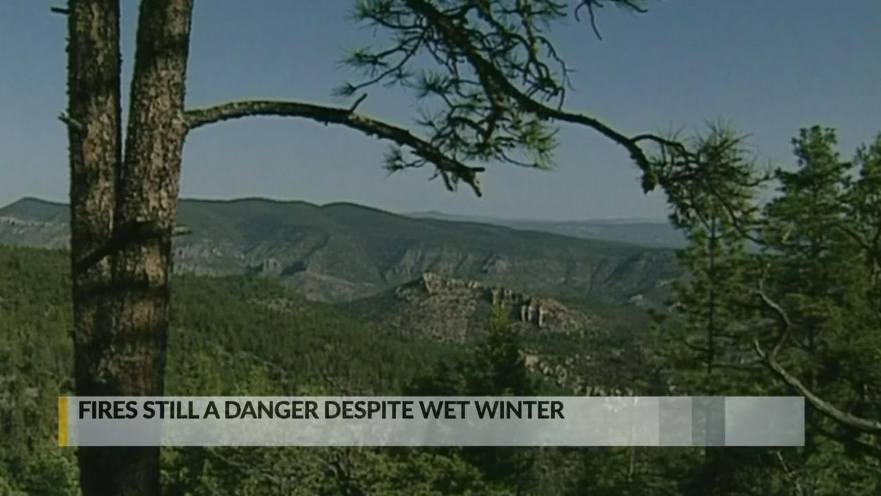 Officials warn of wildfire threat despite wet winter_1556578169580.jpg.jpg