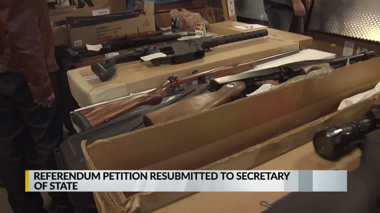 State rep resubmits petition to overturn controversial gun law_1554264472881.jpg.jpg