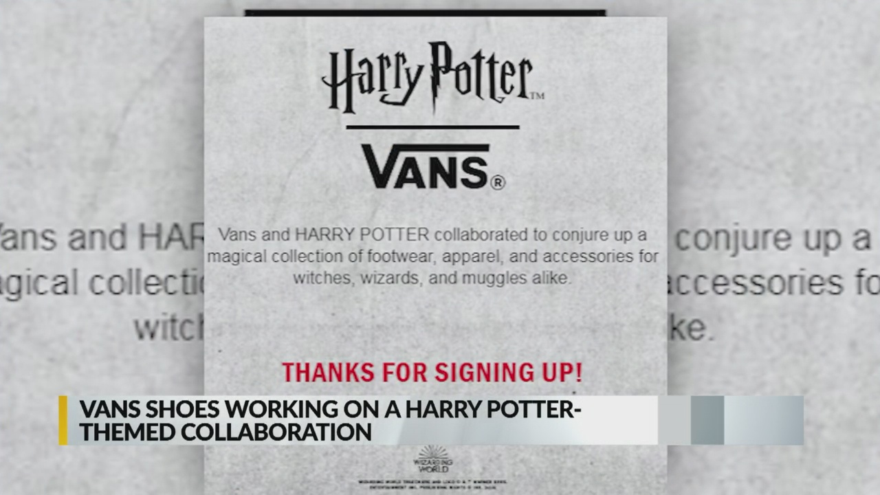 Vans Harry Potter_1556024531570.jpg.jpg