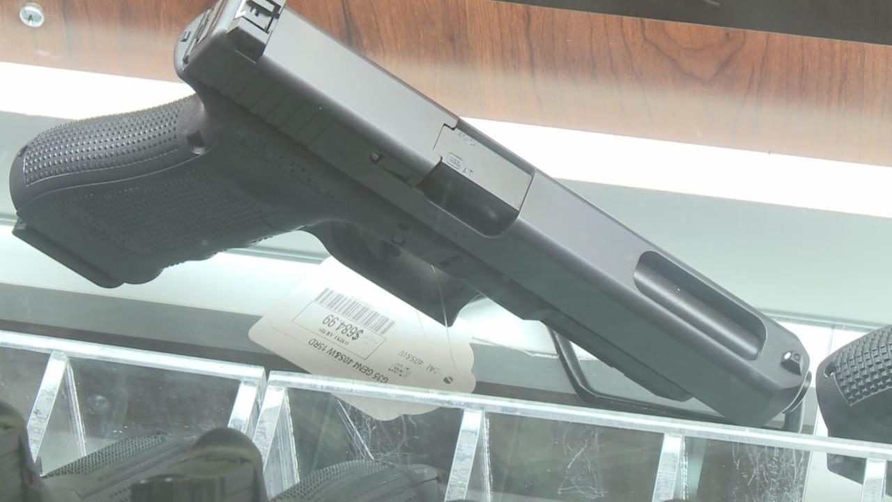hand gun stock_182101