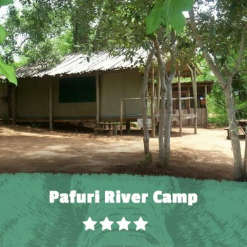 Kruger featured image Pafuri River Camp
