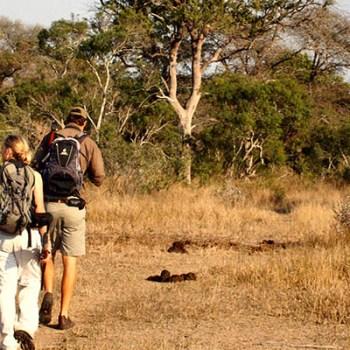 Lukimbi Lodge Bushwalks