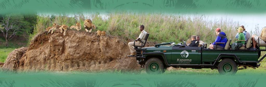 Kapama Private Game Reserve Game Safaris