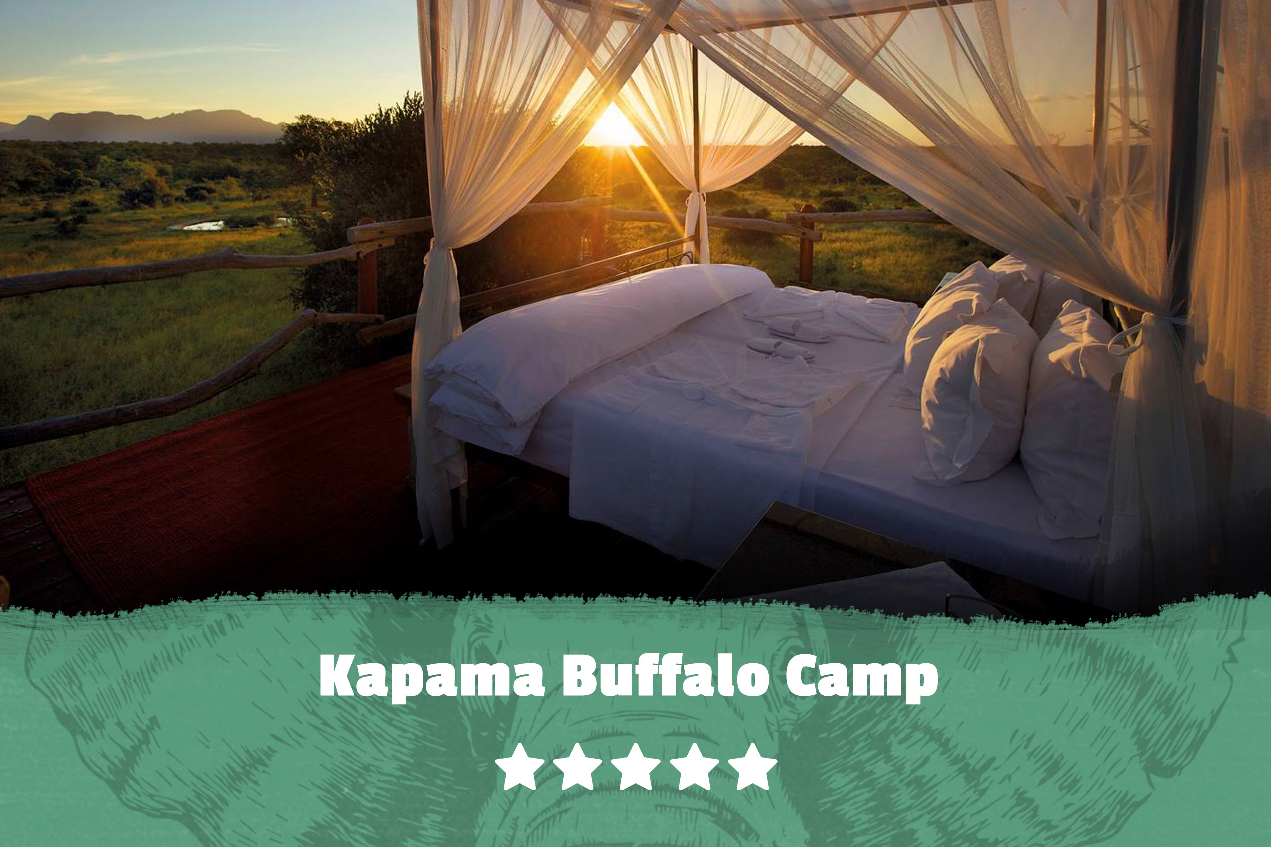 Kruger featured image Kapama Buffalo Camp