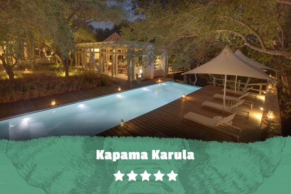 Kruger featured image Kapama Karula