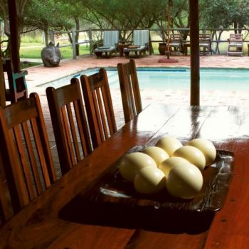 Serondella Game Lodge Deck and Pool