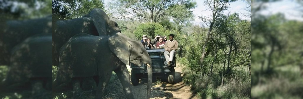 Chapungu Luxury Tented Camp Elephants Crossing