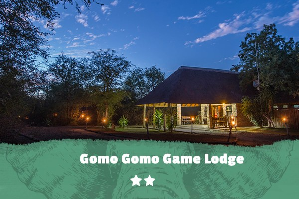 Kruger featured image Gomo Gomo Game Lodge