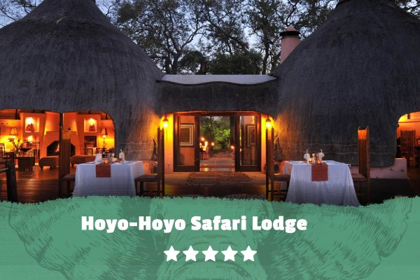 Kruger featured image Hoyo Hoyo Safari Lodge