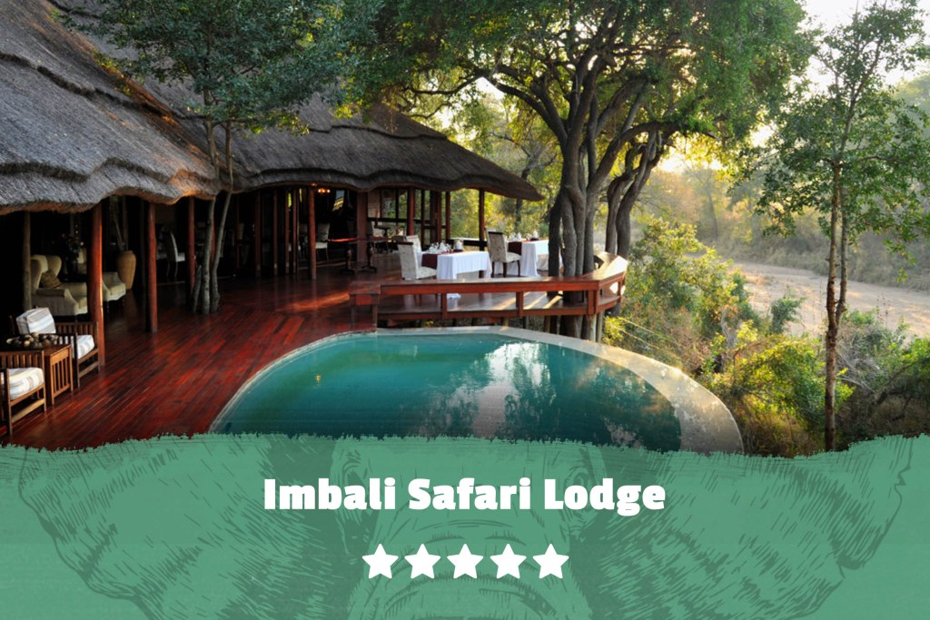 Kruger featured image Imbali Safari Lodge