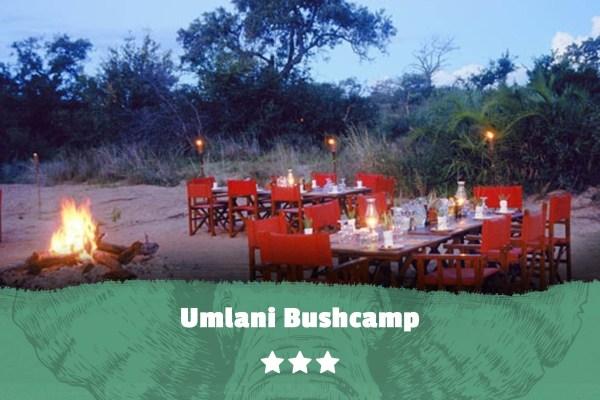Kruger featured image Umlani Bushcamp