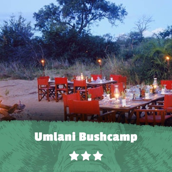 Kruger featured image Umlani Bushcamp
