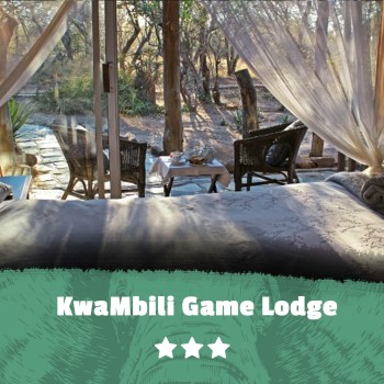 Kruger featured images KwaMbili Game Lodge