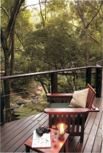 Serenity Forest Eco Reserve Forest Suite Deck