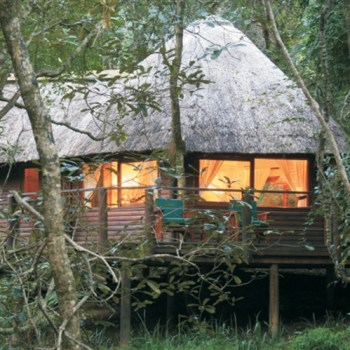 Serenity Forest Eco Reserve Forest Suite Exterior