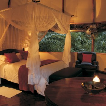 Serenity Forest Eco Reserve Forest Suite Interior Space