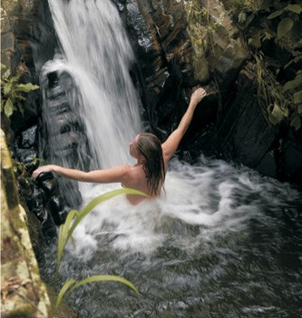 Serenity Forest Eco Reserve Waterfall Experience