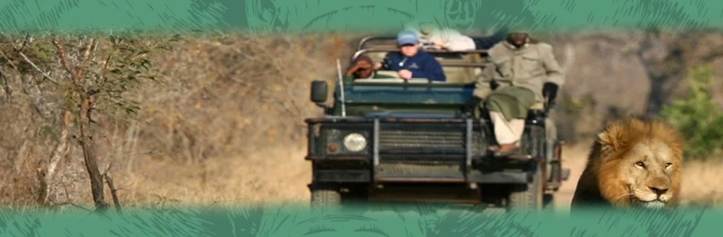 Thornybush Game Lodge Wild Game Drives