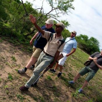 Bateleur Mobile Camp Guided Walks