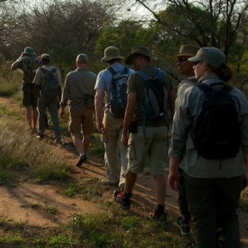 Bateleur Mobile Camp Walking Safaris Trip