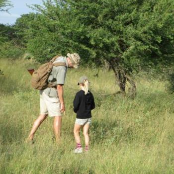 Bateleur Mobile Camp Walking and Learning