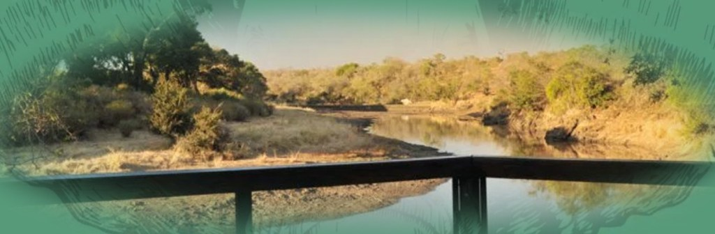 Hamiltons Tented Camp Overview of River