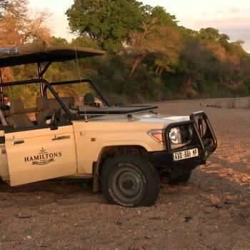 Hamiltons Tented Camp Safari Game Drive Stop