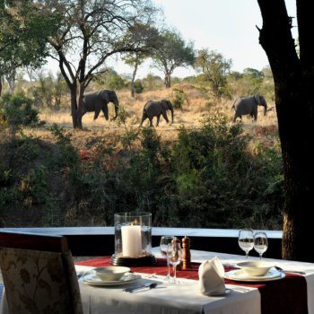 Imbali Safari Lodge Elephant Lunch