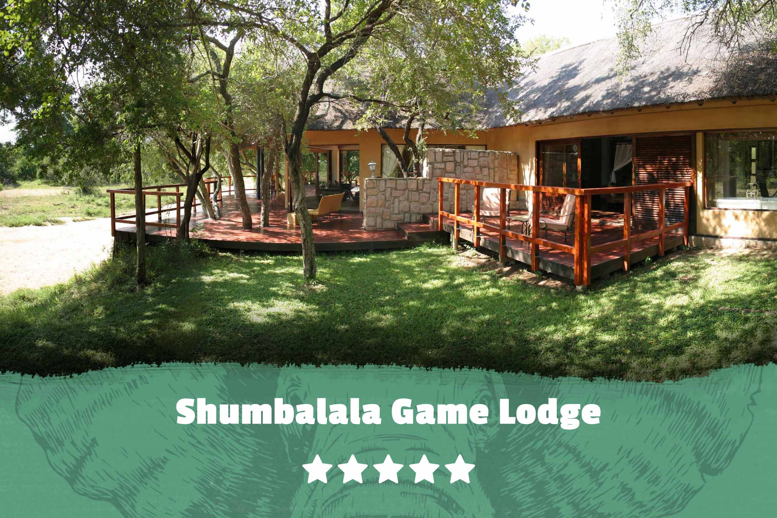 Kruger featured image Shumbalala Game Lodge