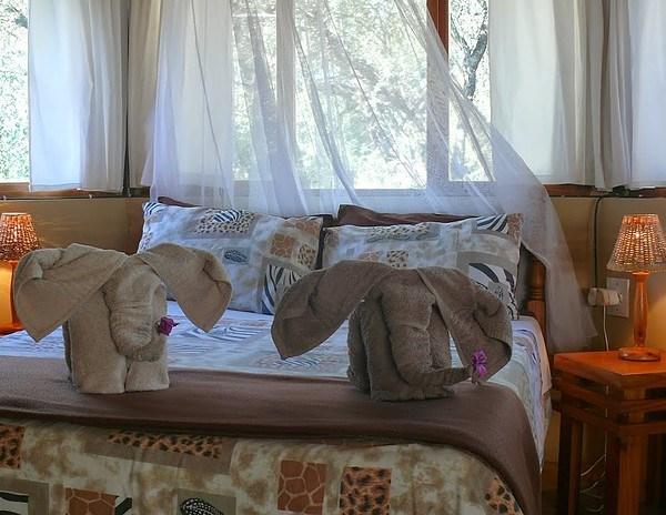 Baluleni Safari Lodge Elephant Greeting