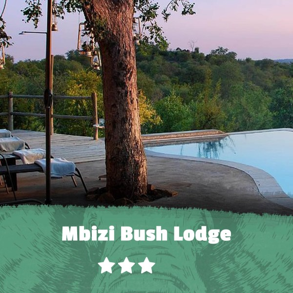 Kruger featured image Mbizi Bush Lodge