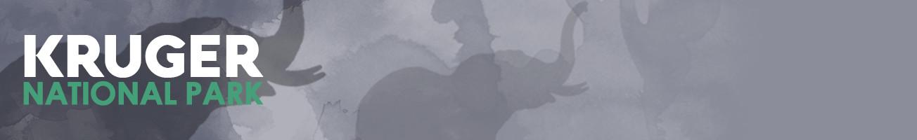Kruger-header