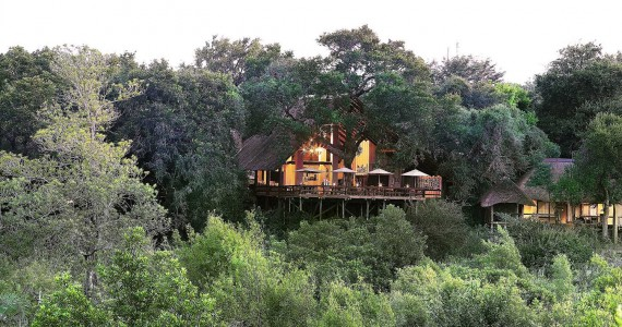 Londolozi Game Reserve Varty Camp