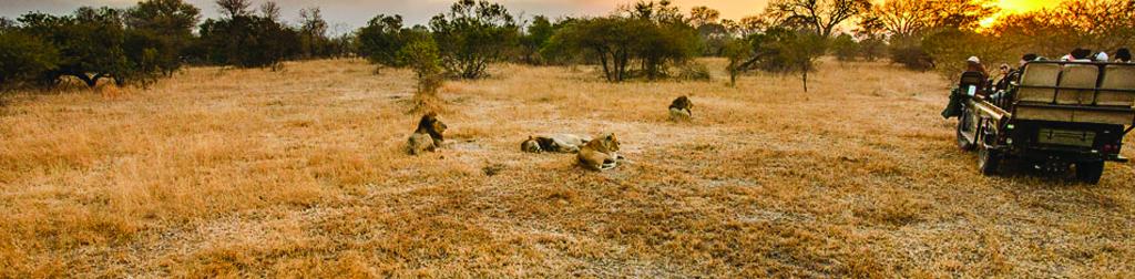 Amani Safari Camp Location