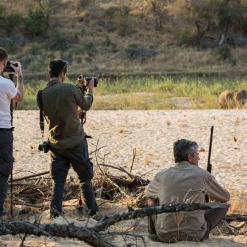 Amani Safari Camp Photographic Safaris