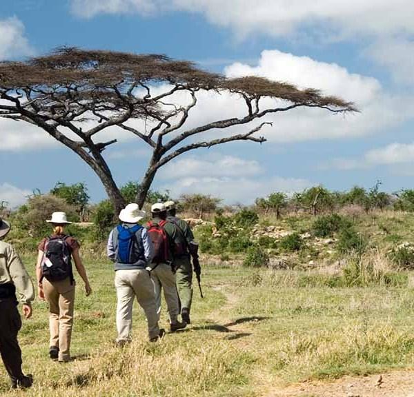 N'kaya Game Lodge Safari Walks
