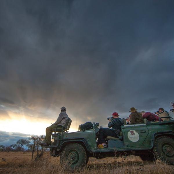 Bateleur Main Camp Game Drive Safari