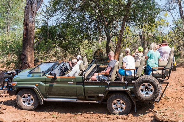 Makalali Private Game Lodge Game Drive Safari