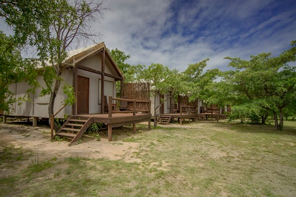 Nkambeni Safari Camp Tent Exterior