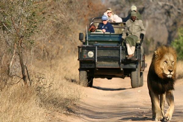 Nkelenga Tented Camp Game Drive Safari