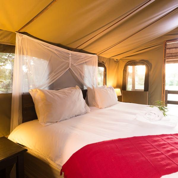Shindzela Tented Safari Camp Safari Tent Bed