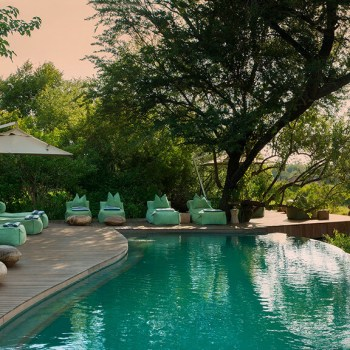 Ngala Tented Camp Pool