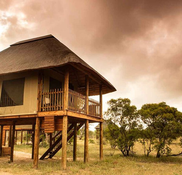 Nthambo Tree Camp Suite Exterior