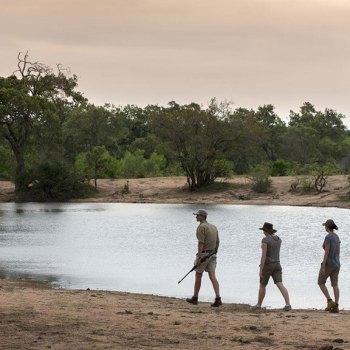 Tanda Tula Safari Camp Guided Walk