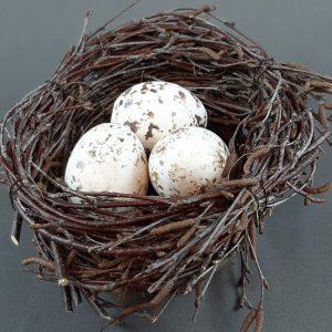 pesä munilla