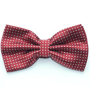 Bow Ties Pre-Tie - Silk
