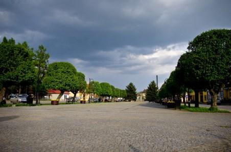 Park w Siennie (fot. M. Wlazłowski)