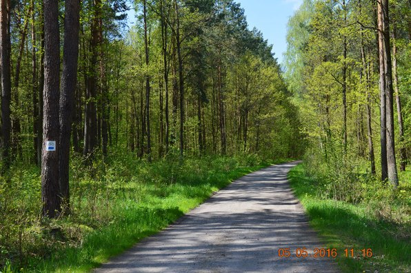 Szlaki rowerowe (fot. J. Niedziela-Gawlik)